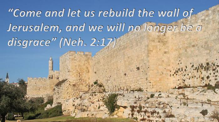 Nehemiah Enabler, Organization
