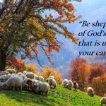 #121: Do You Lead Like a Trail Boss or a Shepherd?