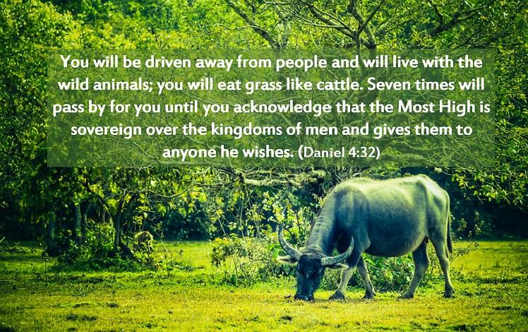 Daniel, Nebuchadnezzar