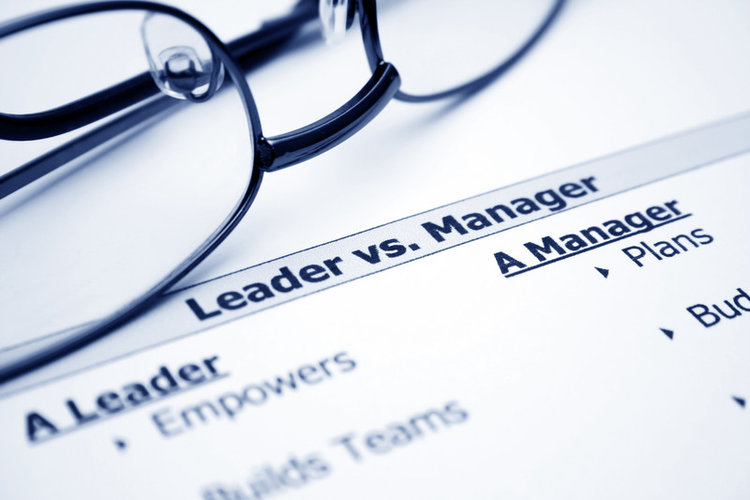 Leaders, Executives