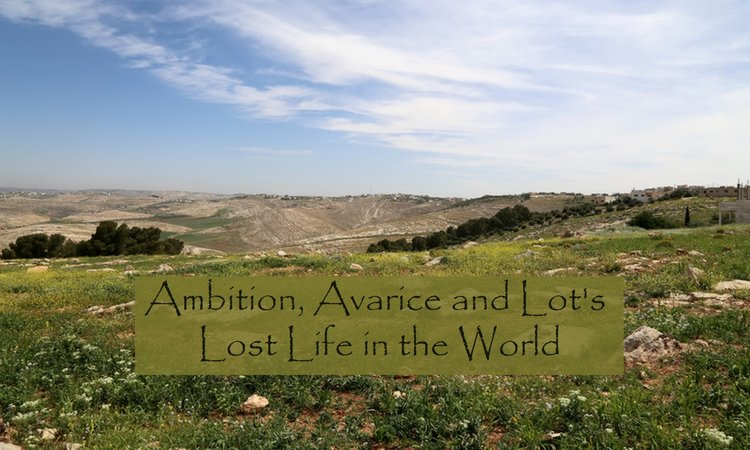 Ambition Avarice Lot