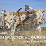 #191: It Takes Character & Courage to be Used by God