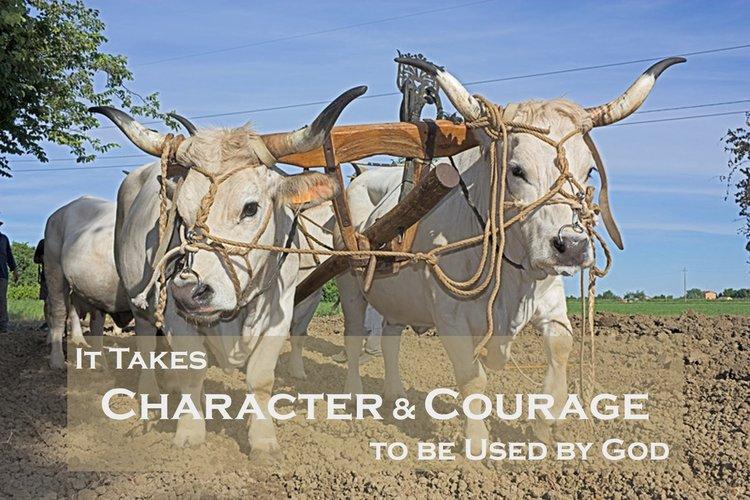 Shamgar, oxgoad, oxen