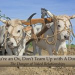 #237: If You're an Ox, Don't Team Up with A Donkey!