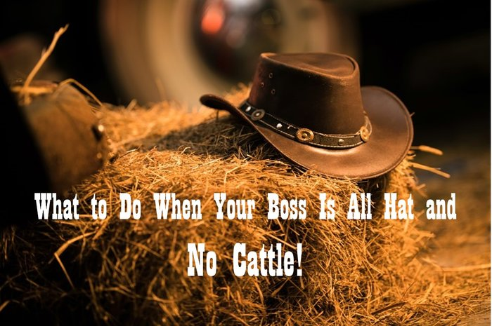 8c661d8182d 295  What to Do When Your Boss Is All Hat and No Cattle - Ron R ...